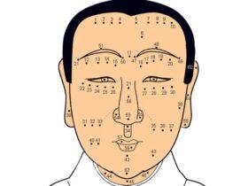 vị trí nốt ruồi trên mặt